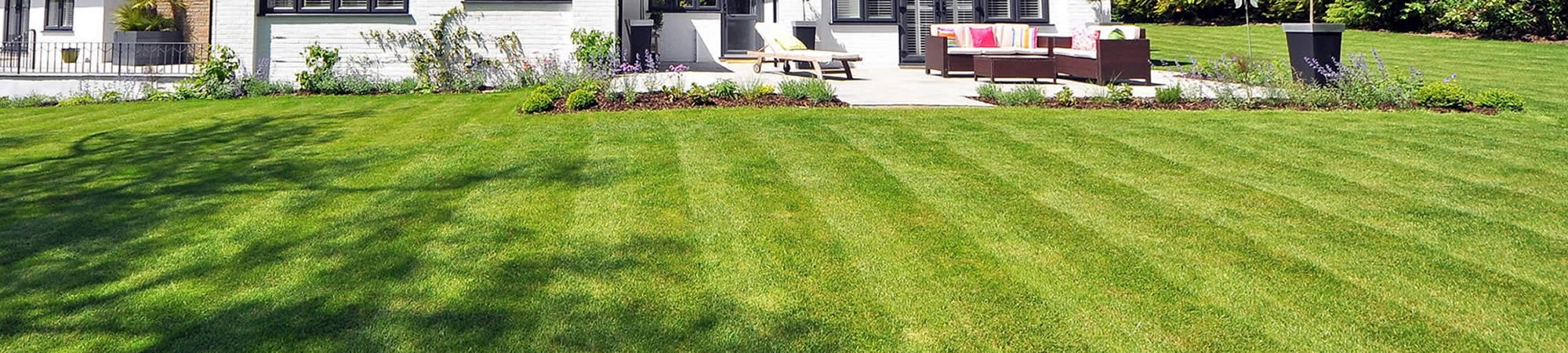 Find Lawn Maintenance Company near me